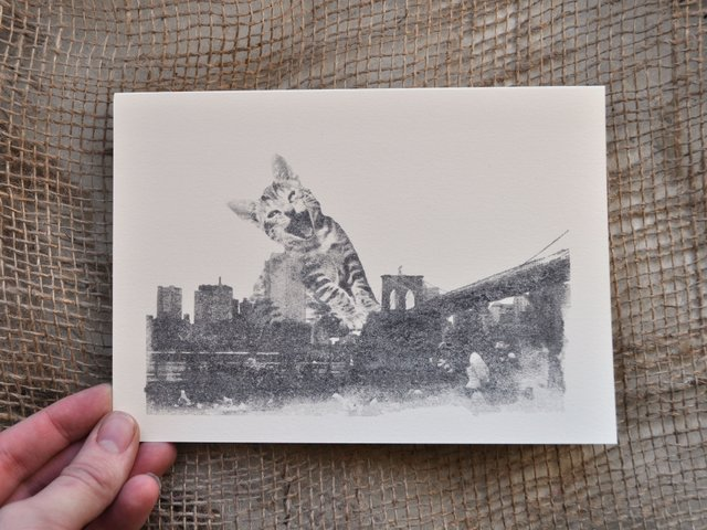 Black and White Photo Transfers