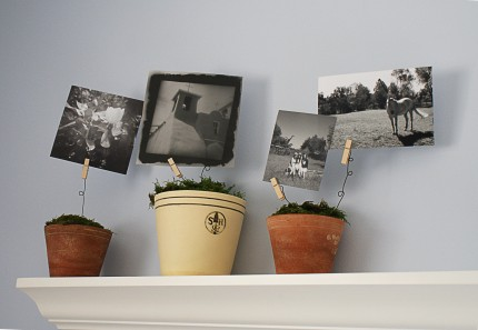 How To: Make a Photo Display with Flower Pots