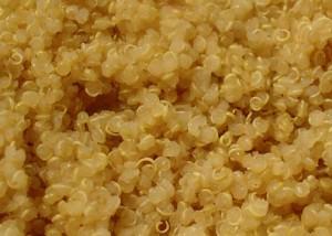 cooked quinoa tails